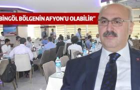 """""""BİNGÖL BÖLGENİN AFYON'U OLABİLİR"""""""