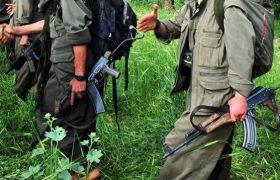 3 PKK'LI ETKİSİZ HALE GETİRİLDİ